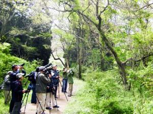野鳥ゾーン 写真