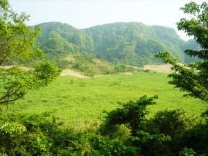 草原ゾーン 写真